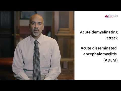 Autoimmune Encephalitis - An Overview