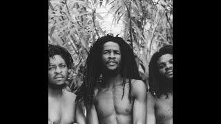 Deep Roots Reggae Selection {Vol.3}