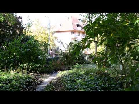 Botanic Garden Freiburg