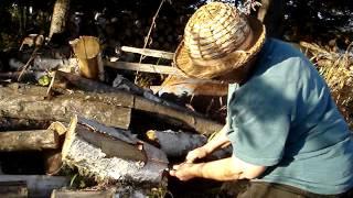 Harvesting Birch Bark, Part 3