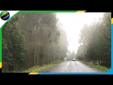 Nijipanda → Rungwe Road in Mbeya - Tanzania