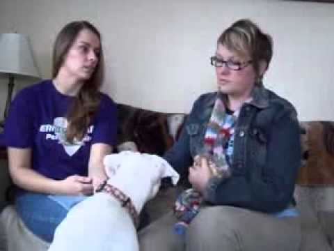 Living With and Training Deaf Dogs -- Part 1