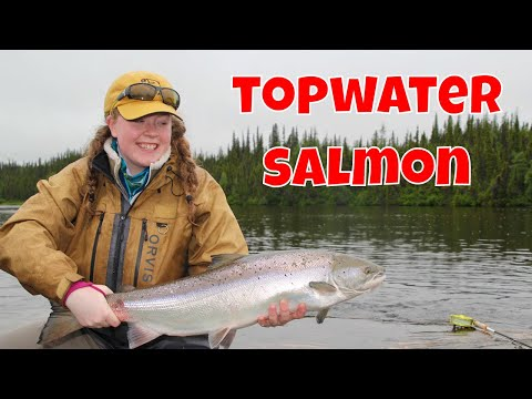 Topwater Atlantic Salmon Strategies