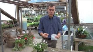 Plant Virus Testing