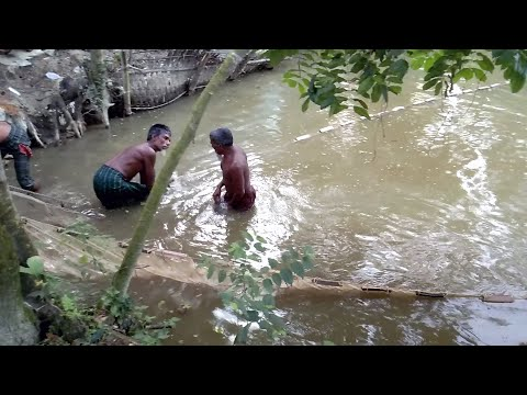 Fish Hunting Use Big Net।Village people catching Huge Fish Ep 11