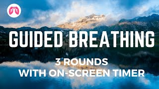 Wim Hof Guided Breathing (3 rounds with onscreen timer)