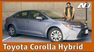Toyota Corolla Híbrido ⭐️ - Sorprendente evolución y el mejor híbrido por el precio