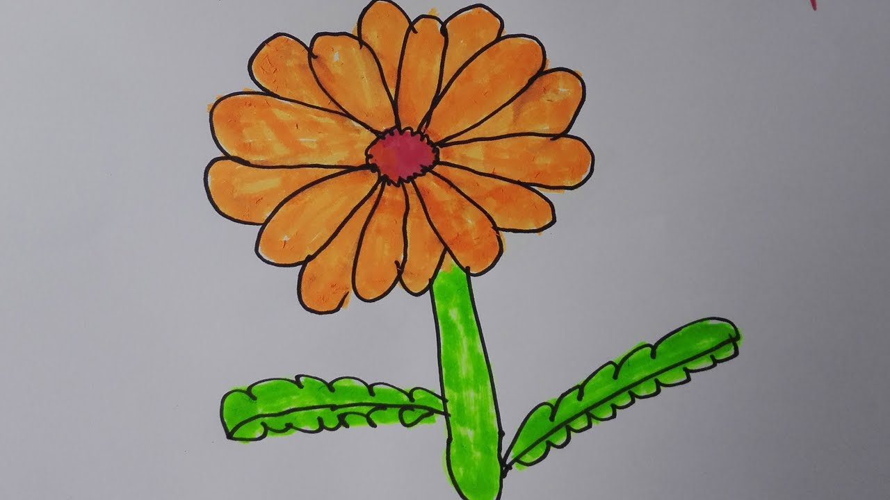 how to draw basic flowers draw a realistic flower draw flowers