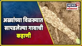 Special Report: अळ्यांच्या विळख्यात सापडलेल्या गावाची कहाणी | 11 July 2019