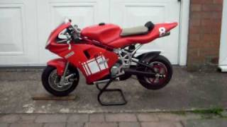 My old Ducati rep GRC RR midi 6.2hp polini minimoto ....great until your joints start to hurt!