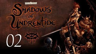 Neverwinter Nights: Shadows of Undrentide - 02 - Character Generation