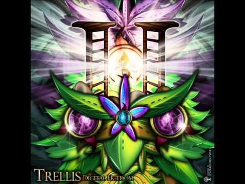01   Trellis vs Prottos Reaction   Radiation