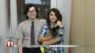 News Fargo Stolen Dog October 18th
