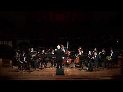 Serenade in D minor, Op. 44 - A. Dvorak (1841-1904)