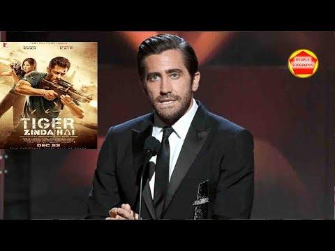 Hollywood Media TALKING About Tiger jInda hai Trailer PBH News