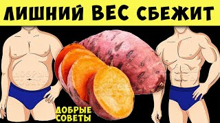 постер к видео 12 продуктов, которые Быстро Сжигают Жир + еда от Которой нужно отказаться чтобы похудеть