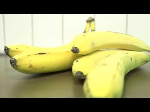 Students create gluten-free banana flour