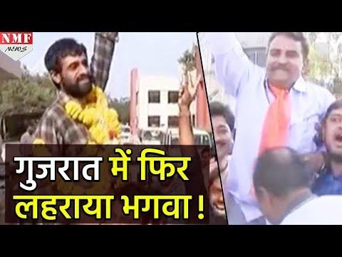 Gujarat में फिर लहराया भगवा, Congress का हो गया सूपड़ा साफ