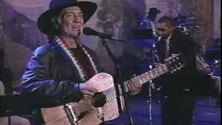 Willie Nelson / Moonlight Becomes You