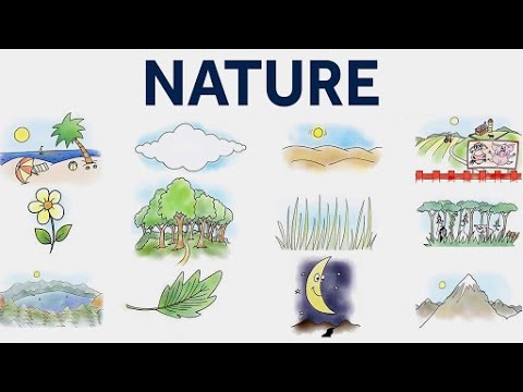 Learn Nature - Nature Vocabulary For Kids | Pre School Learning and Educational Videos For Kids