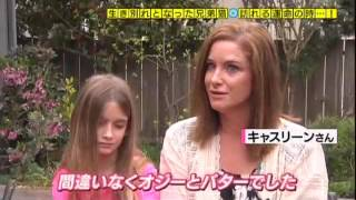 Unbelievable (Japanese TV Show)