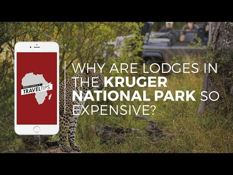Why are lodges in the Kruger National Park so expensive? Rhino Africa's Travel Tips