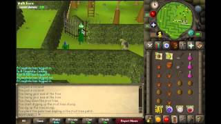 OSRS Farming Guide | Part One | Trees & Fruit Trees