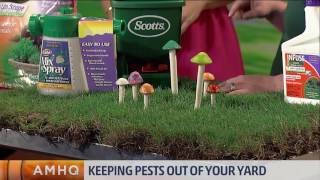 Getting Rid of Pests in Your Yard