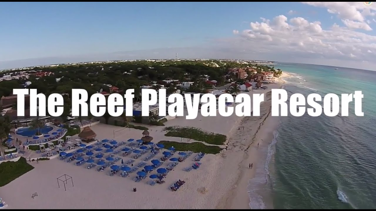The Reef Playacar All Inclusive Resort In Playa Del Carmen Mexico