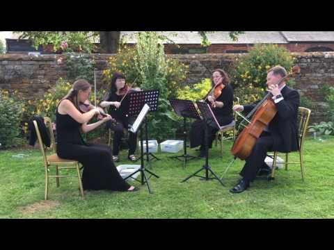 Wedding String Quartet - Ariella Strings