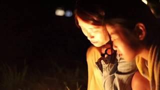 松野町目黒地区蛍の畦道ライトアップ