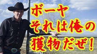 海外の反応「安くておいしいもんね~」日本の回転寿司を狙った獲物が取られると勘違いしてたテキサスな人?