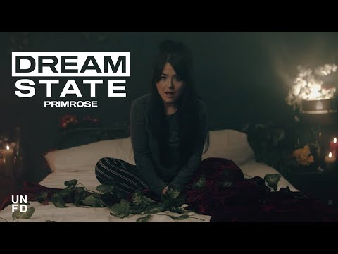 Dream State - Primrose