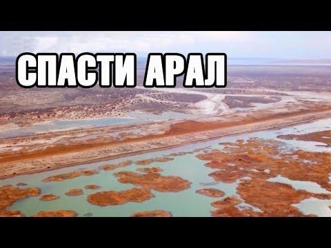 Спасти Арал! На дне озера высадили 500 тысяч гектаров саксаула