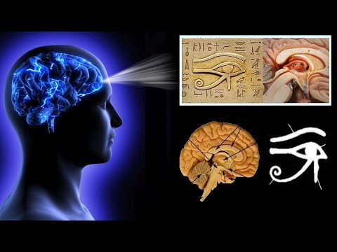 Scientists Discovered 6th Sense Connected with the Pineal Gland