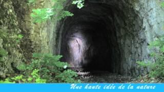 Un été au Plateau d'Hauteville (Ain)