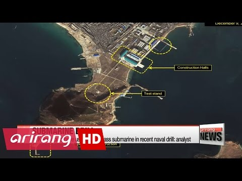 N. Korea could have used Sinpo-class submarine in recent naval drill: analyst