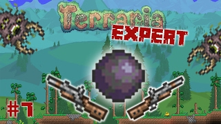 Shadow Orb Jagd - Terraria EXPERT Mode [#7]