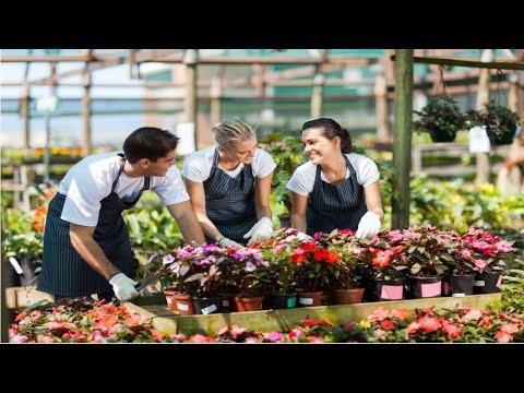 Curso Como Montar uma Floricultura