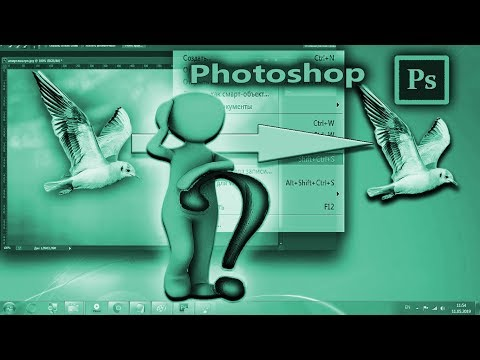 Как сохранить выделенную область в Photoshop (Фотошопе)