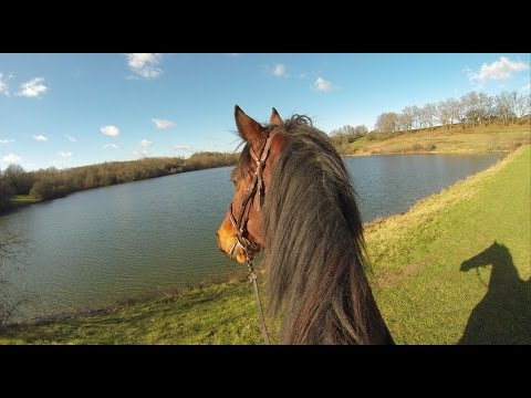 Horseback riding - GoPro