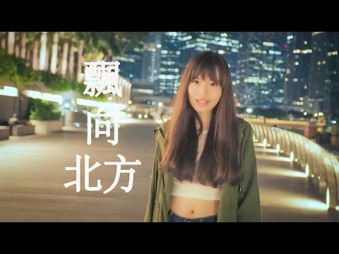 黃明志Namewee feat. 王力宏 Leehom Wang【漂向北方 Stranger In The North 】文慧如  1080HD Lyrics Video