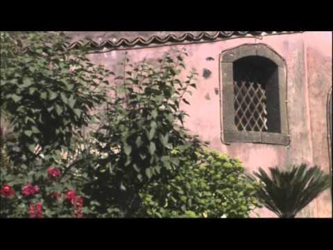 Marijuana, la piantagione stile narcos sequestrata in provincia di Catania from YouTube · Duration:  39 seconds