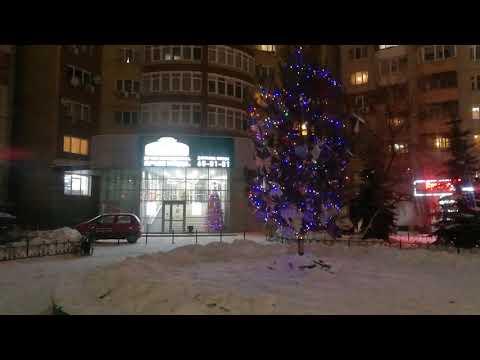 Купить Новогодние живые ёлочки-сосны с доставкой в Тюмени