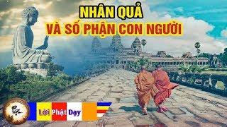 Câu chuyện Phật giáo thật 100% Nhân quả Báo ứng Số Phận Con Người (Mới)