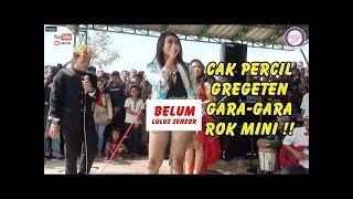 Download Video Cak Percil Gregeten Gak Kuat Nahan Anu Gara Gara Rok Mini Live Bukit Bonsai MP3 3GP MP4