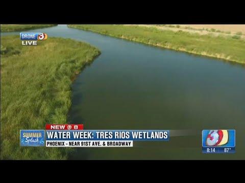Summer Splash: Tres Rios Wetlands