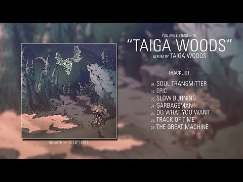 Taiga Woods (Norway) - Taiga Woods (2017) | Full Album mp3