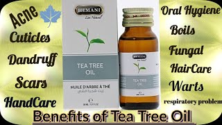 How to Use Tea Tree Oil for Pimples/acne,Scars,Scalp*Top 5 Uses of Tea Tree Oil*