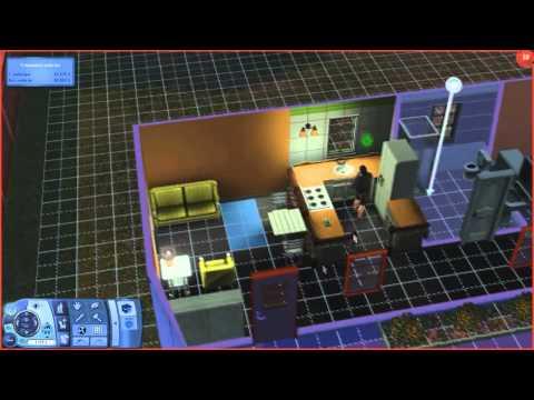 Sims 3 Вор- неудачник